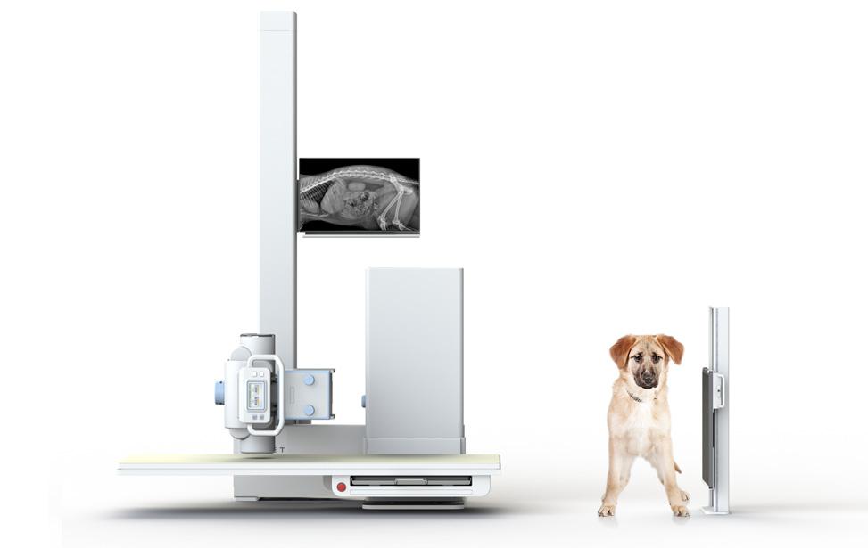 Veterinary Digital X-Ray System